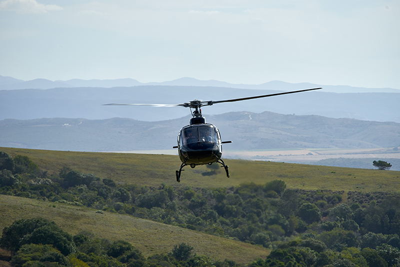 Helicopter Image Flight